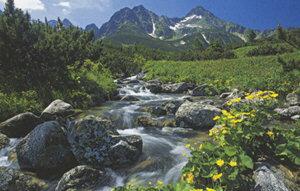 Природа Словакии.